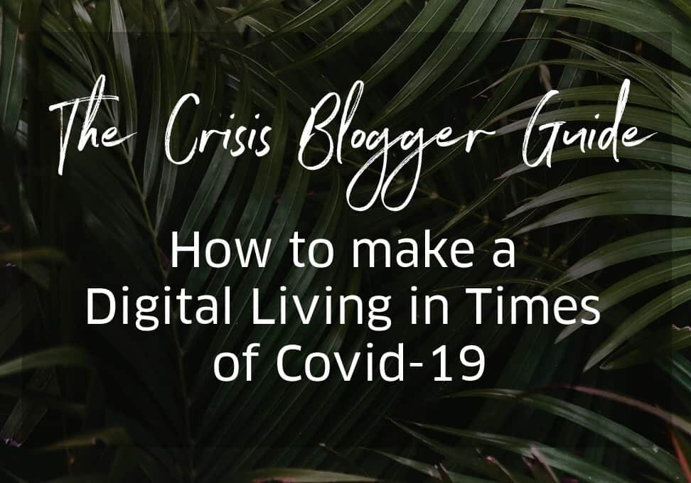 Blogger Crisis Covid Guide - how to make money online